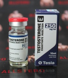 Testosterone E 250MG/ML - ЦЕНА ЗА 10МЛ